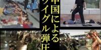 仏記者「ウイグルは非情な弾圧を受けている」、中国の反テロ姿勢の矛盾指摘=中国メディア「この記者の偏見の深さには震撼させられる」